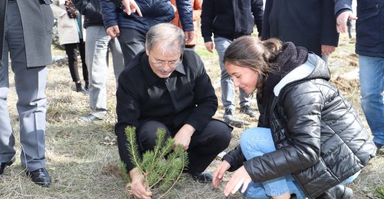 100 Fidan Okulun Bahçesinde Toprakla Bulundu
