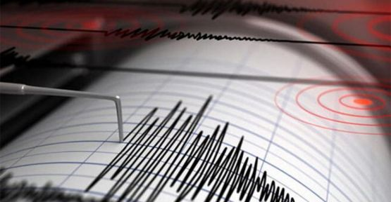 3.7'lik Depremle Sallandık