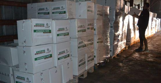 Astranova Tarım'dan İhtiyaç Sahiplerine Ramazan Yardımı