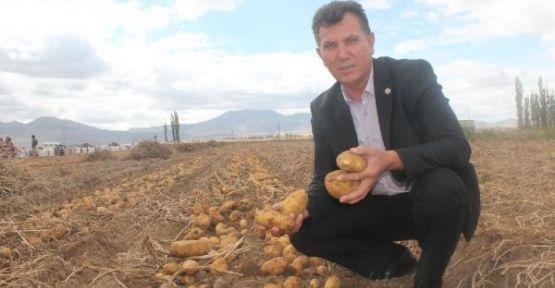 ÇKS Belgesi İle Patates Ekimi Yapabilecek