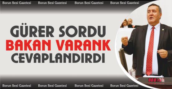 Gürer sordu, Bakan Varank yanıtladı