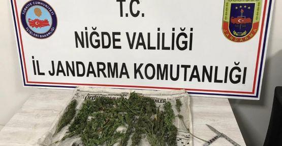 Jandarma Uyuşturucuya Geçit Vermedi