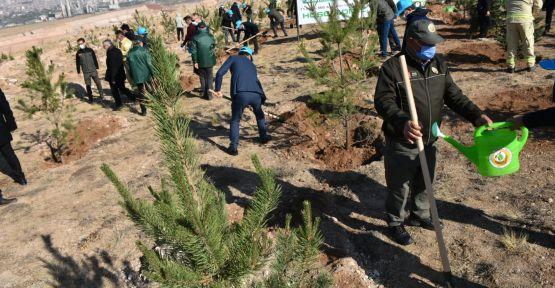 Niğde'de 2 Bin 500 Ağaç Toprakla Buluştu