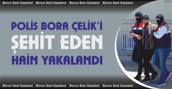 Polis Bora Çelik'i Şehit Eden Terörist Yakalandı