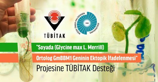 """""""Soyada Geninin Ektopik İfadelenmesi"""" projesine TÜBİTAK desteği"""