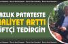 """Gürer, 'Yazlık patateste maliyet arttı, üretici tedirgin!"""""""